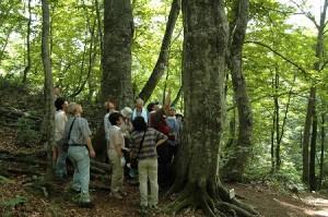 白神山地の人と暮らしと文化1