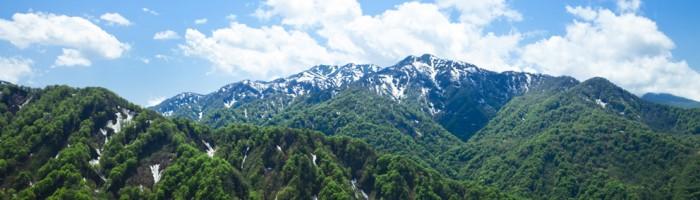 白神山地の画像 p1_1