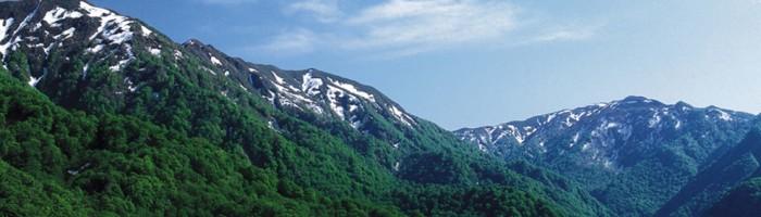 白神山地の歴史_catch-700x200