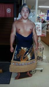 相撲 舞の海