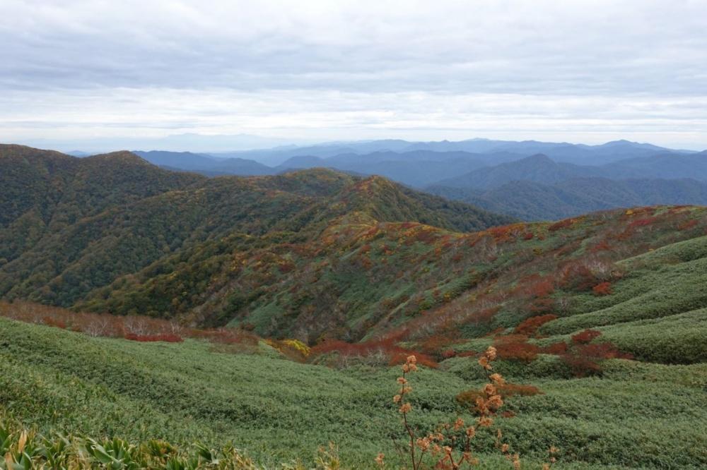 白神岳山頂付近